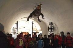 Exkurze - muzeum Brno, březen 2013
