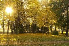 Podzim u školy